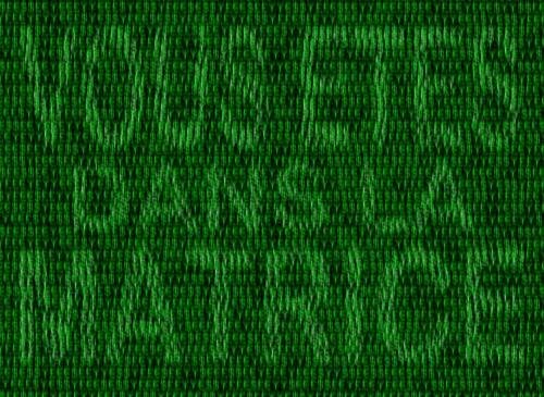 14 2 - Vous êtes dans la matrice.jpg